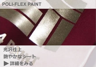 detail_poli-flex paint