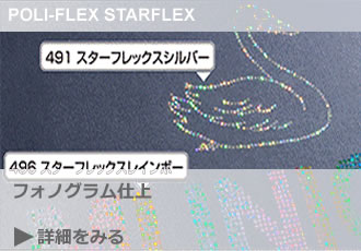 detail_poli-flex starflex