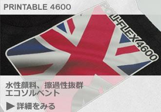 detail_printable4600